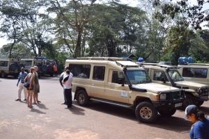 Our extended Land Cruiser with the pop up top...custom built for all safari companies and they run on diesel!