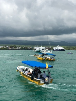 Water taxi to Las Greitas and Angermeyer resort.